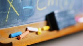 School Employee & School Teacher Background Verification
